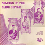 Sultans of the Slide Guitar